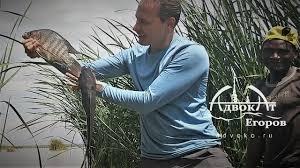 Зимняя рыбалка в Африке и другие приключения адвоката ...