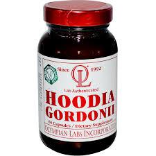 Resultado de imagen de hoodia gordonii