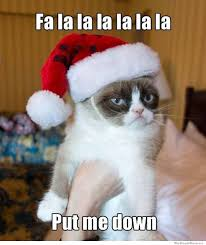 10 Best Grumpy Cat Christmas Memes | WeKnowMemes via Relatably.com