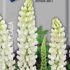 <b>Люпин</b> - <b>Семена</b> цветов в цветных пакетах - <b>Семена</b> - Каталог ...