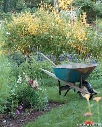 Small Picture Vegetable Garden Glossary Martha Stewart