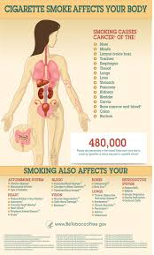 health effects of smoking be tobacco gov infographic showing how smoking affects the body for a text version of the information