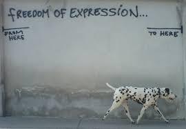 Risultati immagini per libertà di opinione in internet