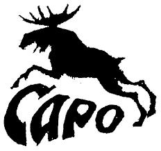 САРО ( <b>SARO</b> ) - купить дешево в Москве в интернет магазине ...