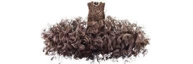<b>Iris van</b> Herpen: Transforming Fashion – Carnegie Museum of Art