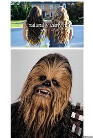 Funny-Curly-Hair.jpg via Relatably.com