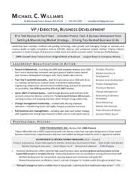 resume writing template   writing resume samplevp business development sample leadership qualifications in action