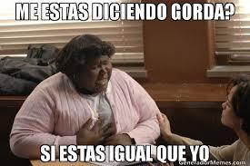 ME ESTAS DICIENDO GORDA? SI ESTAS IGUAL QUE YO | precious meme via Relatably.com