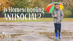 is homeschooling anti social the best schools is homeschooling anti social