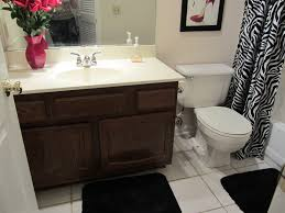 design bathroom remodel small ideas small bathroom remodel on a budget future expat bathroom images remode