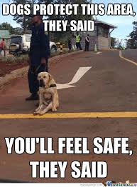 You Are Safe Now Memes. Best Collection of Funny You Are Safe Now ... via Relatably.com