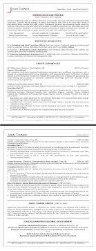 index of images ceo sample resume double png
