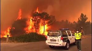 Portekiz'de yangın söndürme uçağı düştü