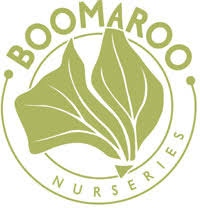 Image result for boomaroo