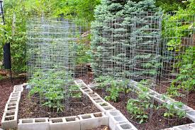 Small Picture Florida Vegetable Gardening Home Design Ideas and Inspiration