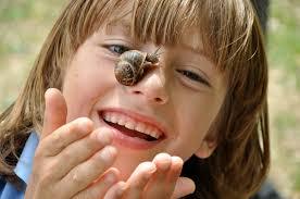 wildtimelan campaign scottish wildlife trust snail investigations c emma bradshaw