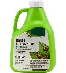 Less Toxic Insecticides | Home & Garden Information Center