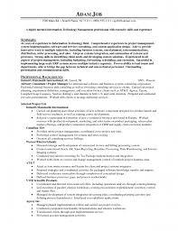 s executive job description s executive resume ceo resum s executive job description s executive job description