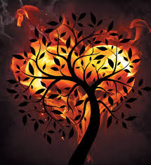 Image result for flame of love