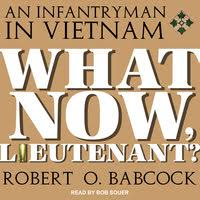 What Now, Lieutenant? - Audiobook - <b>Robert O</b>. <b>Babcock</b> - Storytel