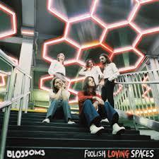 <b>Foolish Loving</b> Spaces - Wikipedia