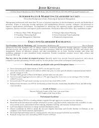 sample marketing resume sales resume samples free download sales    vice president sales marketing resume sample mplett