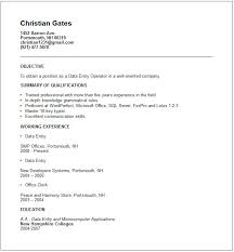 information technology resume examplesdata entry resume example