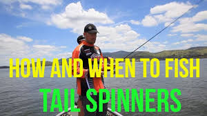Bass <b>Fishing</b> - How to use tail spinners for bass - Dean Silvester ...