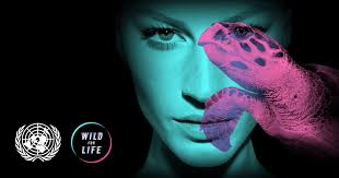 <b>ПИНГВИН</b> | Wild For Life