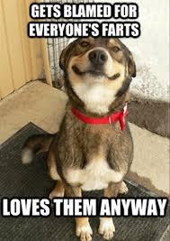 funny-dog-farts-meme – Bajiroo.com via Relatably.com