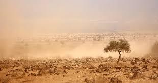 Dürre in Ostafrika: Warum der Hunger zurück nach Afrika kommt ...