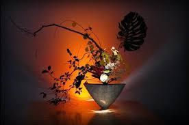 Imagini pentru ikebana