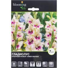 Луковичные цветы в Ногинске – купите в интернет-магазине ...