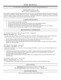 resume example attorney resume samples attorney resume bar resume example attorney resume state s lewesmr attorney resume templates for word attorney resume service