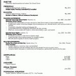 resume example job simplejobresumepro com