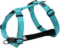 Купить <b>Шлейка для собак Rukka</b> Form голубой 25мм 45-70см с ...