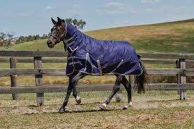 horses for in wyoming weatherbeeta comfitec essential combo neck blanket medium