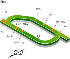 Ayr Races