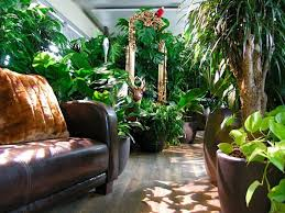 awesome previously unpublished photos of google zurich offices arent boring pinterest zurich photos of and google awesome previously unpublished photos google