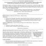 professional entry level resume template writing resume sample entry level resume template resume example entry level