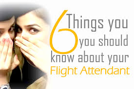 things you should know about your flight attendant a fly guy