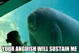 Your Anguish will sustain me - Overlord Manatee - quickmeme via Relatably.com