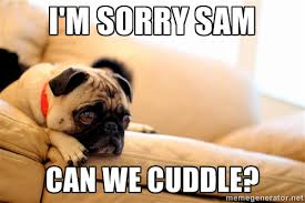 I'm sorry Sam Can we cuddle? - Sorrowful Pug | Meme Generator via Relatably.com