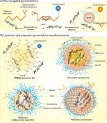 cancer gene therapy targeted genomedicines intechopen schematic structures of advanced nanogenomedicines a bioconjugations of genes polymeric backbone and grafted