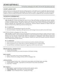 auditor resume internal auditors job description