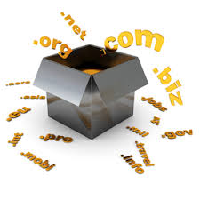 Image result for domain