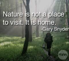 Nature Quotes on Pinterest | Hunting Quotes, Henry David Thoreau ... via Relatably.com