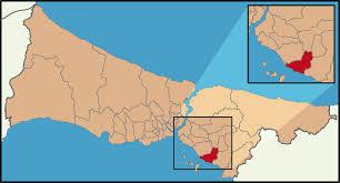 Image result for kartal haritası