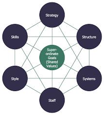 bubble diagrams solution   conceptdraw combubble diagram   mckinsey s framework