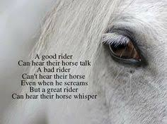 The Horse Whisperer Quotes. QuotesGram